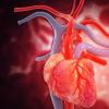 人工智能从一次心跳中检测心力衰竭准确率为100%